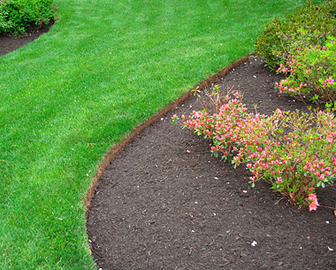 Cheap lawn edging ideas 300x239 edging landscaping ideas for Cheap easy landscape edging
